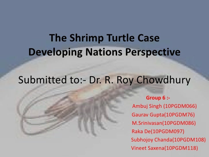 The Shrimp Turtle CaseDeveloping Nations PerspectiveSubmitted to:- Dr. R. Roy Chowdhury<br />Group 6 :-<br />          Amb...