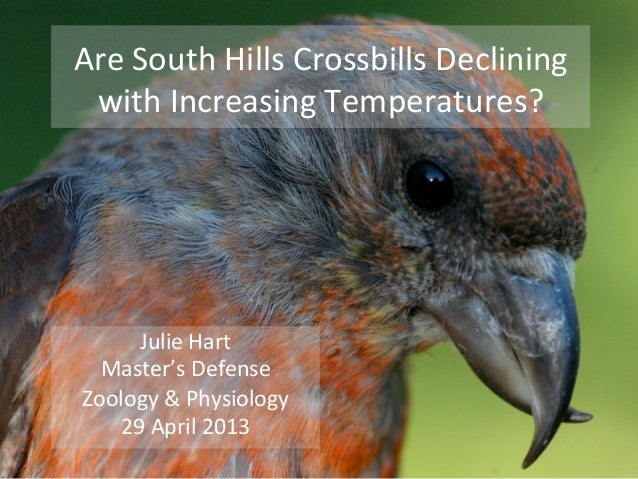 Are	   South	   Hills	   Crossbills	   Declining	    with	   Increasing	   Temperatures?	    Julie	   Hart	    Master's	  ...