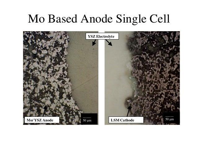 Cell dissertation fuel