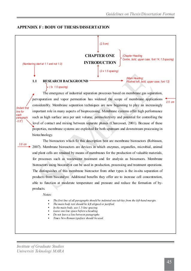 ipsis thesis guidelines