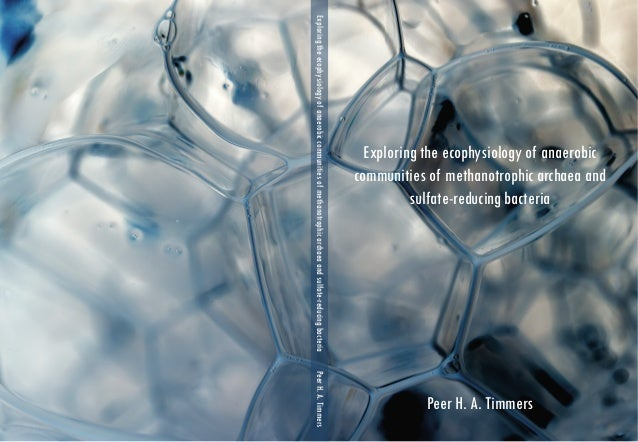 Phd thesis antimicrobial