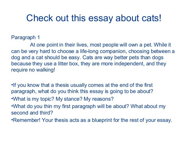 thesis power point 7 check out this essay about cats