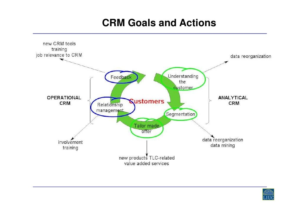 Sales force automation thesis