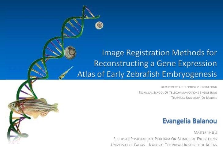 Image Registration Methods for Reconstructing a Gene Expression Atlas of Early Zebrafish Embryogenesis<br />Department Of ...