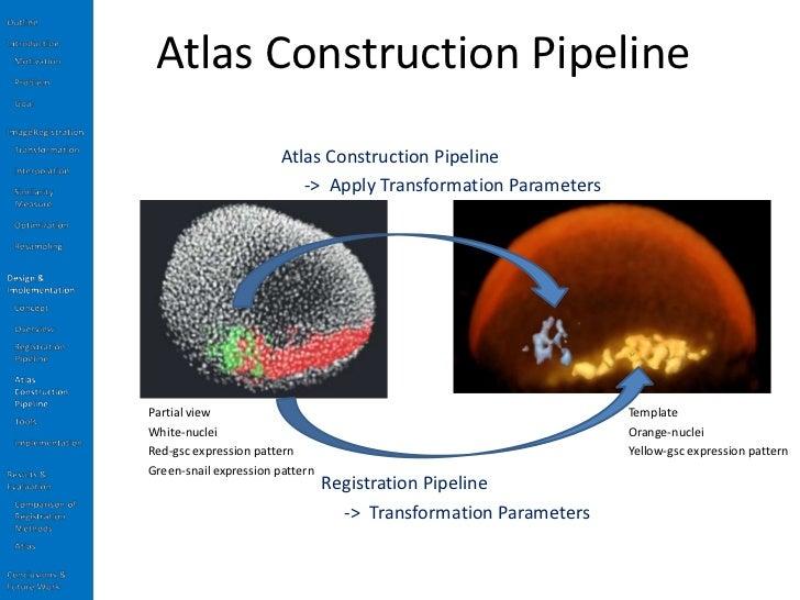 Atlas thesis cds