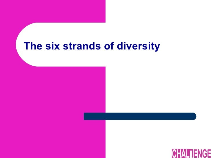 The six strands of diversity