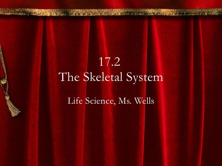 17.2  The Skeletal System Life Science, Ms. Wells