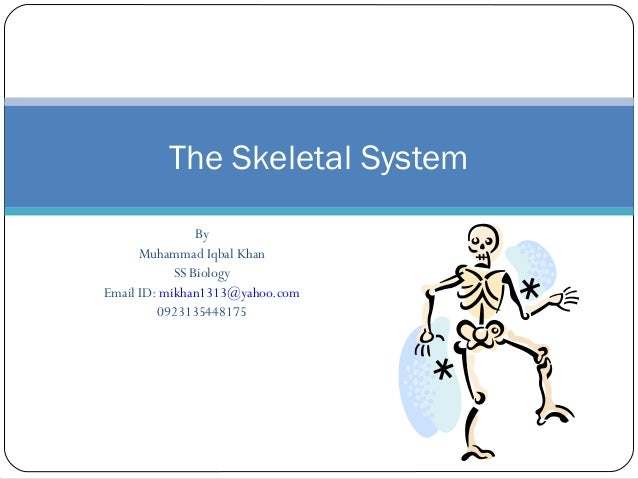 By Muhammad Iqbal Khan SS Biology Email ID: mikhan1313@yahoo.com 0923135448175 The Skeletal System