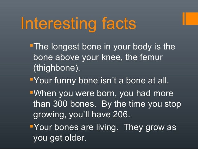 Fun Facts About The Skeletal System For Kids