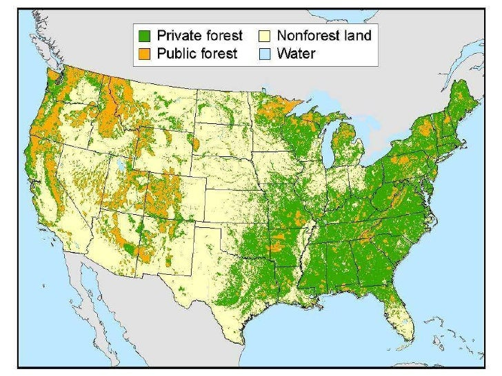 The small scale forestry problem in the United States