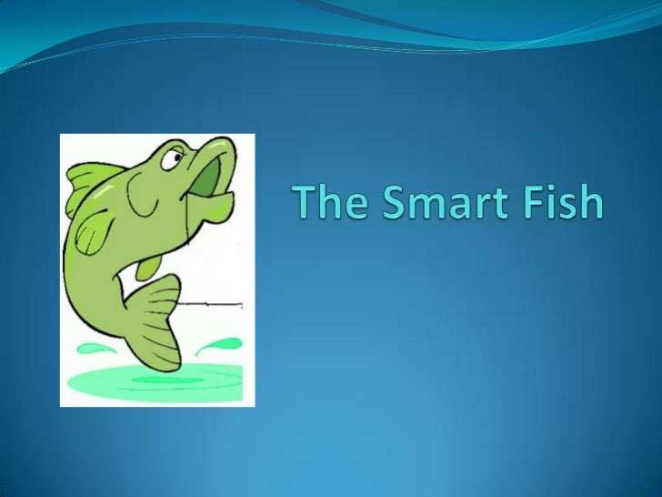 THE SMART FISHThis is the story of a fisherman who goes to the same spot every day to fish. Hehas been very successful in ...