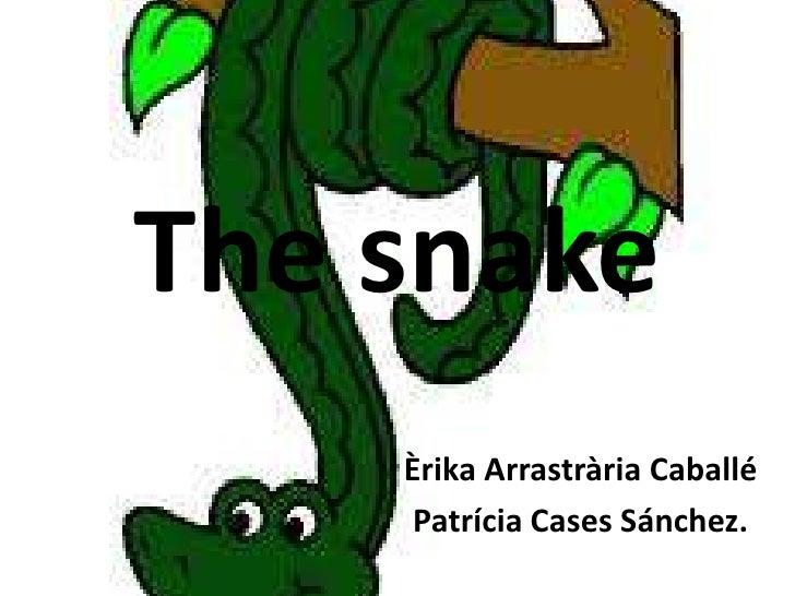 The snake    Èrika Arrastrària Caballé     Patrícia Cases Sánchez.