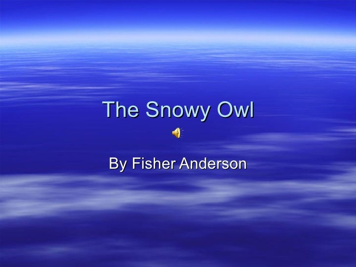 The Snowy OwlBy Fisher Anderson