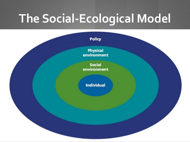 What is the social ecological model