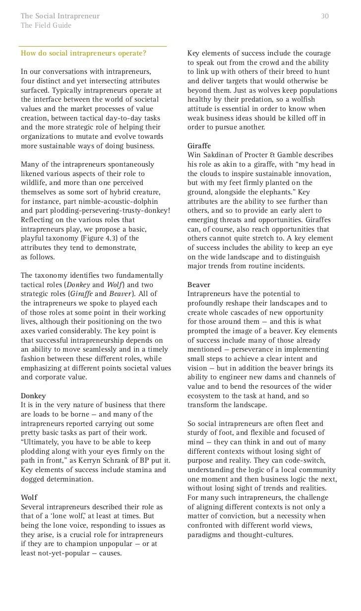 The Social Intrapreneurs A Guide By Sustainability Ideo Skoll Al