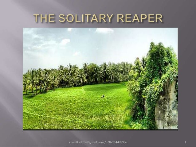 the solitary reaper an analysis