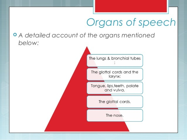 Organs of speech  A detailed account of the organs mentioned below: