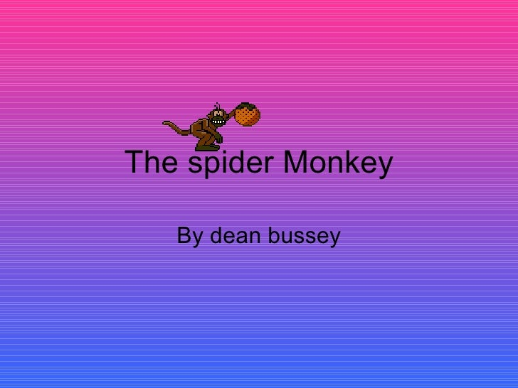 The spider Monkey By dean bussey