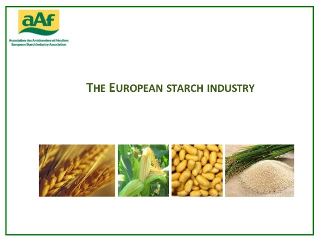 THE EUROPEAN STARCH INDUSTRY