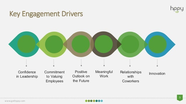 drivers of employee engagement gallup