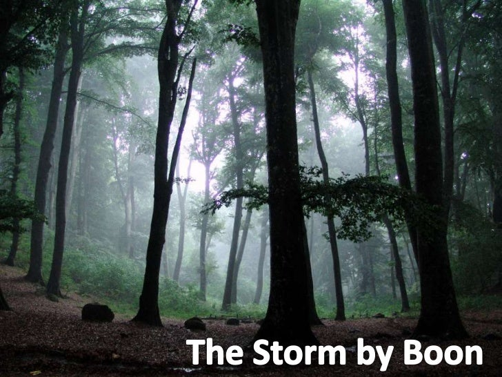 The Storm by Boon<br />