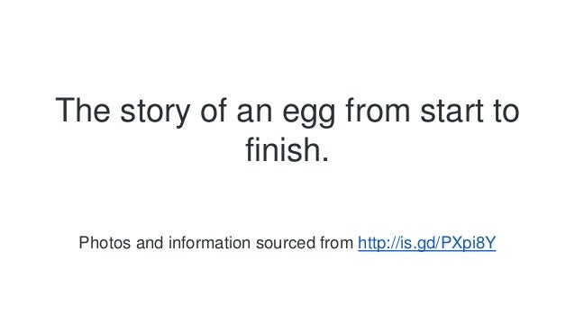 The story of an egg from start to  finish.  Photos and information sourced from http://is.gd/PXpi8Y