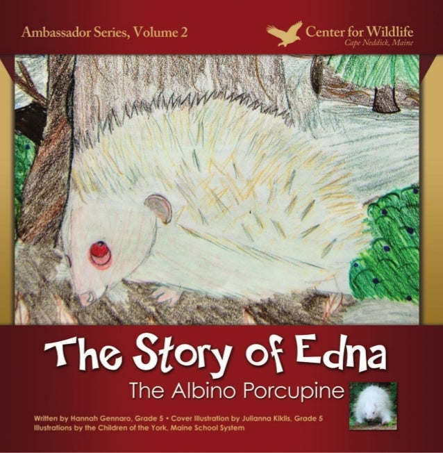 The Story of Edna, The Albino PorcupineIllustrations by the Children of the York, Maine School SystemStory by Hannah Genna...