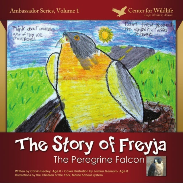 The Story of Freyja, The Peregrine FalconIllustrations by the children of the York, Maine School SystemStory by Calvin Hea...