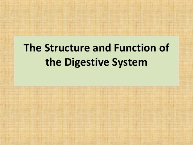 The Structure and Function of the Digestive System
