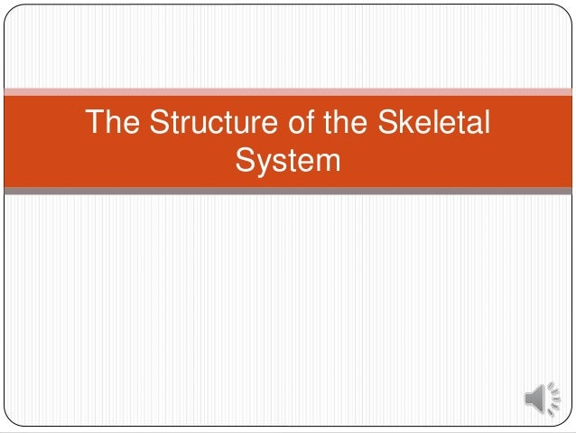 The Structure of the Skeletal System