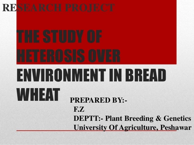 THE STUDY OF HETEROSIS OVER ENVIRONMENT IN BREAD WHEAT RESEARCH PROJECT PREPARED BY:- F.Z DEPTT:- Plant Breeding & Genetic...