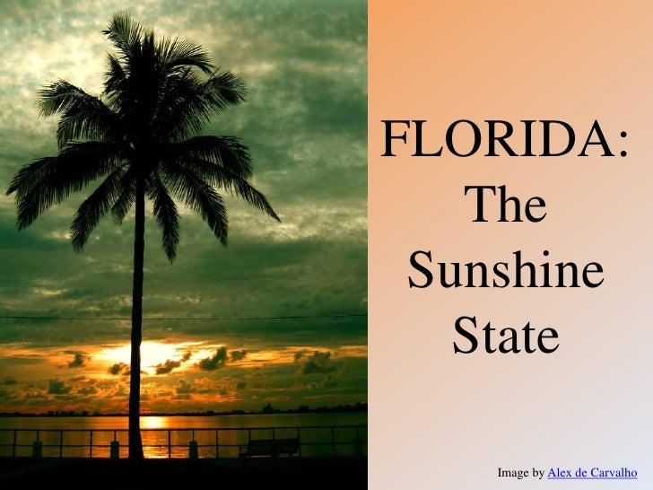 FLORIDA:   The Sunshine   State    Image by Alex de Carvalho