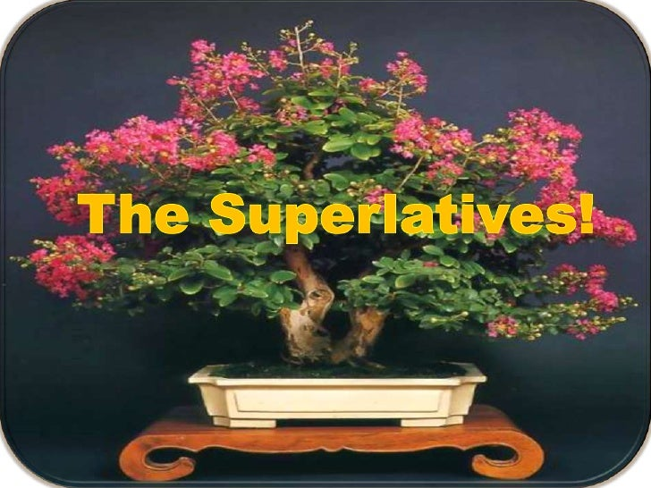 The Superlatives!<br />