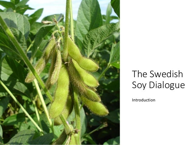 The Swedish Soy Dialogue Introduction