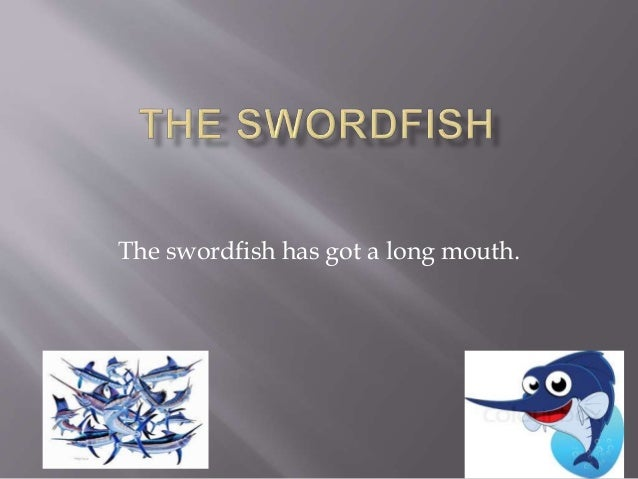 The swordfish has got a long mouth.