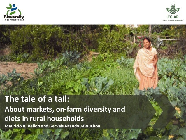 The tale of a tail: About markets, on-farm diversity and diets in rural households Mauricio R. Bellon and Gervais Ntandou-...