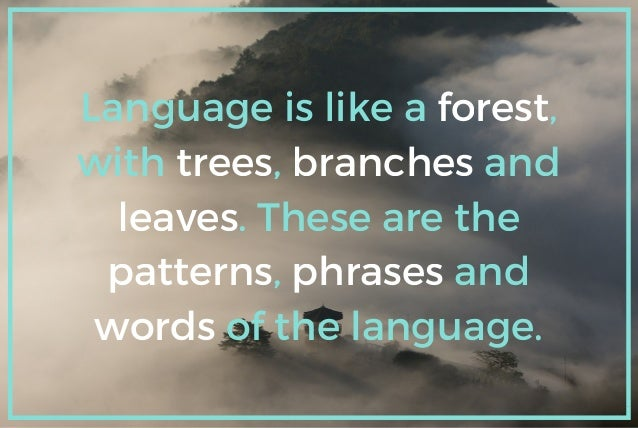 Language is like a forest, with trees, branches and leaves. These are the patterns, phrases and words of the language.