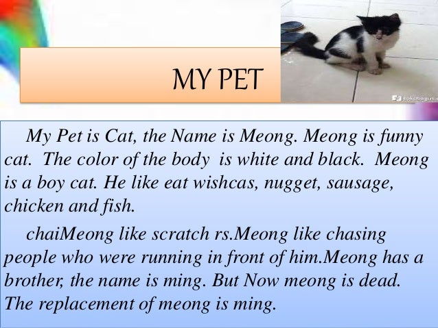 The task of english about My Pet Slide 2