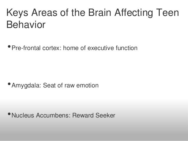 The Adolescent Brain Why Executive >> The Teenage Brain