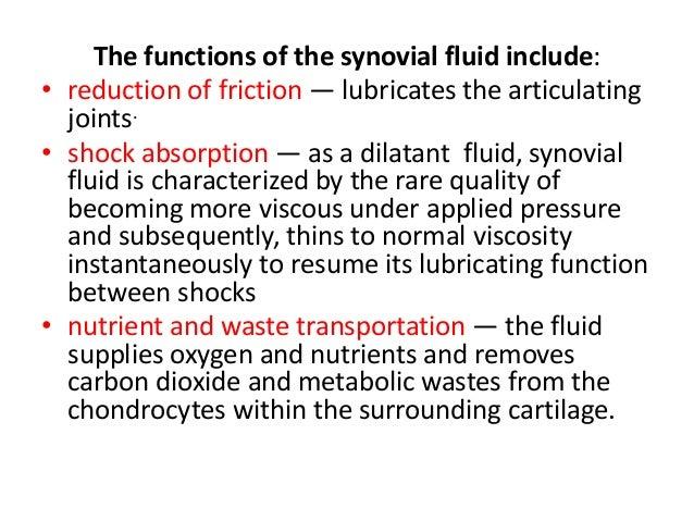 Oral Physiology The Temporomandibular Joint