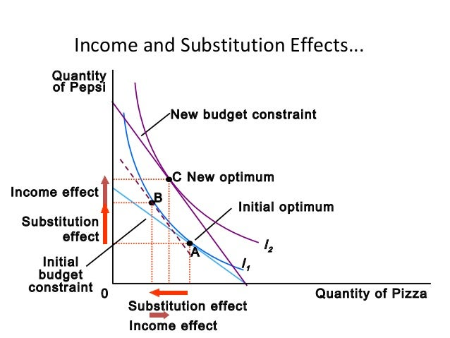an analysis of the theory of consumer choice Theory of the consumer determination of consumer equilibrium the consumer's equilibrium choice is to purchase 2 units of good 1 and 1 unit of good 2.