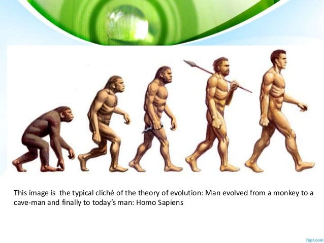 Explain The Theory Of Evolution By Natural Selection By Darwin