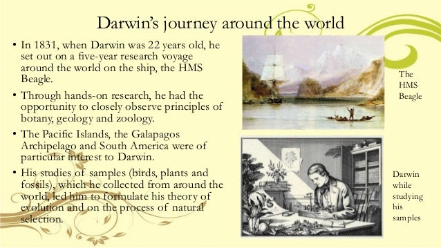 theory of evolution by natural selection essay Evolution and creationism save your essays here so you can the theory of evolution by natural selection proposed by charles darwin is one of the more.