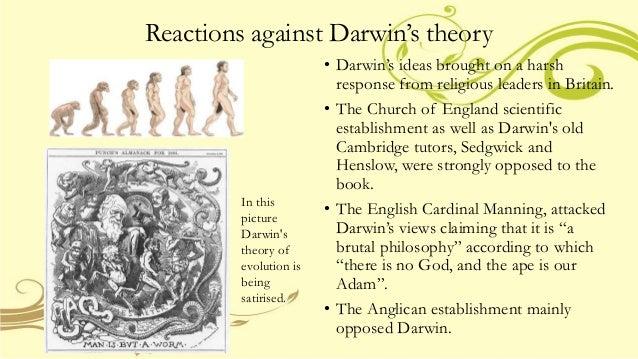 Darwin S Theory Of Natural Selection Of A Shark