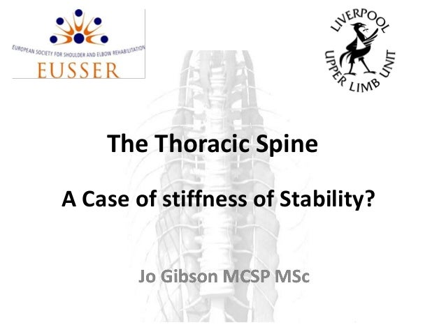 The Thoracic SpineA Case of stiffness of Stability?