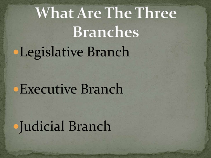 relationship between the three branches of government