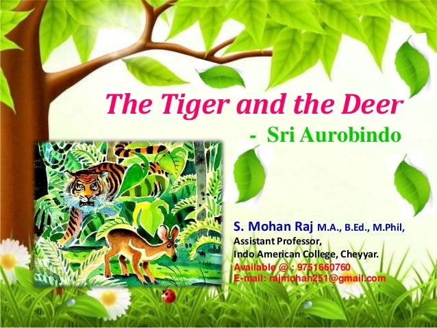 the tiger and the deer short summary