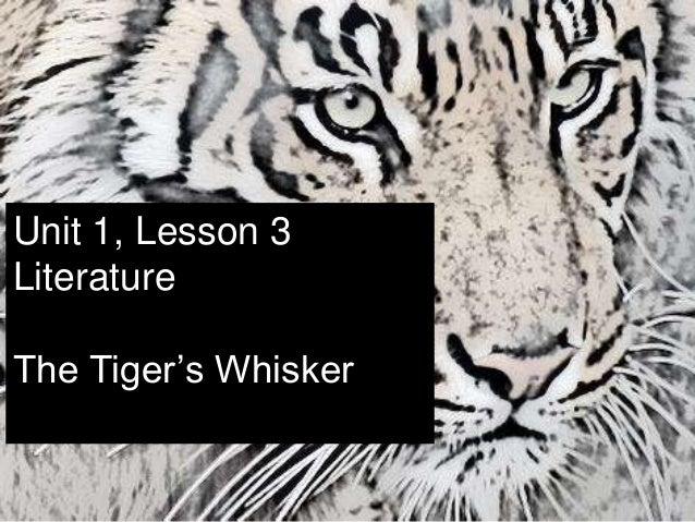 Unit 1, Lesson 3 Literature The Tiger's Whisker
