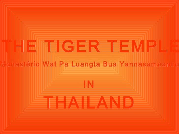 THE TIGER TEMPLE THAILAND IN Monastério Wat Pa Luangta Bua Yannasampanno