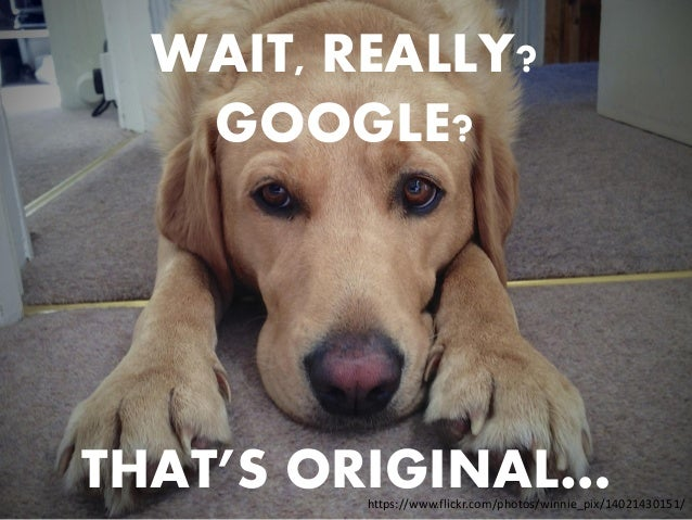 GOOGLE? THAT'S ORIGINAL… WAIT, REALLY? https://www.flickr.com/photos/winnie_pix/14021430151/